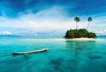 Bula Fiji / by Samantha Muir