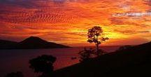 Fidschi Individualreisen / Der Südsee-Traum #Fidschi besteht aus hunderten vulkanischen Inseln – viele davon unbewohnt – im glitzernden Südpazifik. Die Traumstrände und das kristallklare Wasser mit den bunten Korallen und die grüne Vegetation der Inseln machen es zu einem wahren Paradies für Abenteurer! Wir planen dein individuelles Abenteuer – schreibe an jasmin@traveljunkies.tours.