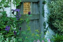 Dazzleing Doors / Entries,Outdoor,Indoor,Wreaths / by Cathy Donaldson