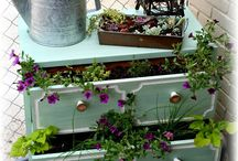 Container Gardening / by Cathy Donaldson