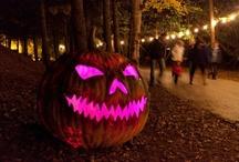 Frightwater Valley / Halloween Fun!