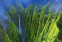 Aloha:  Molokai See & Do