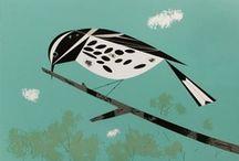 Birdnerd / by Jessie