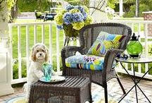 Posing Pets / Sometimes our animal models steal the show from Pier 1's newest sofas, pillows or dining tables, but we don't mind because they make us smile. Whenever you need to smile, come here to enjoy our dogs, cats, bunnies and the occasional unicorn. / by Pier 1 Imports