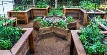 Raised Bed Garden Inspiration / My Garden to Table provides premium raised bed gardens in 4x8 and 4x4 formats arranged and installed in simple, thoughtful, creative designs complete with organic heirloom plants and premium soils, maintenance and care services.