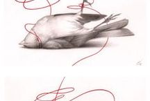 Art: Bird & Fish Images / Art & Images / by Bec