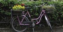 Niemcy i rowery