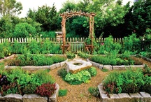 Garden ideas for my home