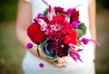 Purple/Fuchsia/Burgundy Flowers / Purple floral inspiration for weddings, events & decor.  / by The Bride's Cafe
