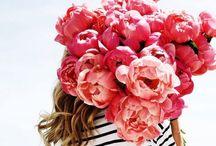 Por Onde Flor