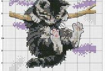 Křížkovka - kočky