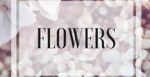 Flowers / Flowers, roses, sunflowers, roses, bouquet