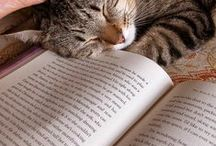 Everyone Loves a Great Book