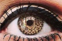 Eyecessorize Love
