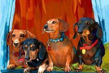 * Dachshunds *