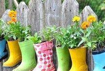 Garden & Yard  Love