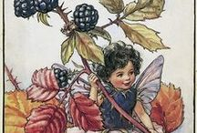 "Illustration XII / Cicely Mary Barker (1895 - 1973) was a British artist who is still renowned for her enchanting and fanciful ""flower fairy"" illustrations."