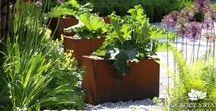 Rdza w ogrodzie/ Rust in the garden / Stal kortenowska, która z czasem pokrywa się rdzą, to niezwykle wdzięczny materiał, chętnie wykorzystywany do ogrodowych aranżacji.