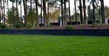 Idealny trawnik/ Perfect lawn