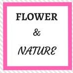 Flowers and Nature / Flowers and Nature | beautiful Flowers and Nature pictures
