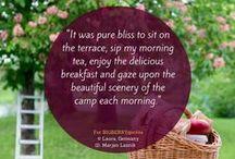 BIG BERRY Quotes