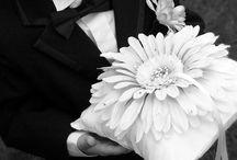 Flowergirls & Pageboys