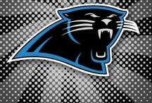Panthers Nation / I'm a Carolina Panthers fan and can't wait to go to a few games each year as a family :-)