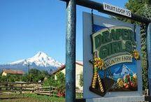 My Oregon