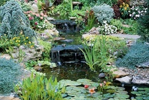 Water Garden & Garden Waterfall / This is a Water Garden & Garden Waterfall Board For Everyone. If you want to be added to the Group send me an email with your Pinterest URL and I'll add you as a collaborator. kelsie@successetc.com then you can invite all your friends.