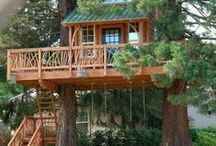 Small Space   Tree House / With Tree House Masters and Tiny Homes becoming more popular, why not have a Tiny Tree House!