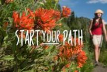 Start Your Path / Start your path to health, wellness and vitality.