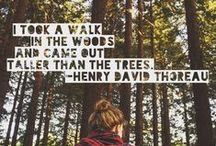 Take a Walk, Witch! / Walking, hiking...