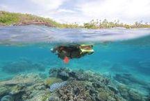 Fiji Diving & Snorkeling