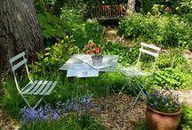 Garden Sanctuary / by Susan Cadley