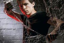 Tom Holland / Spider Man