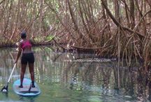 SUP (Stand Up Paddle) / This board will gather items about this particular watersport