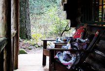 dream cabin / by Natasha Medeiros
