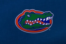 Florida Gators Games Day Must Haves! / by TotallyCollegiate.com