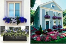 Gardens: How to Garden Indoors and Out / Ideals for creating and maintaining outdoor spaces and indoor plants and arrangements. / by Amy Wallace