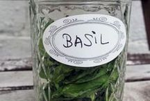 Herbal Living...Basil