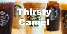 Thirsty Camel / Welcome to Thirsty Camel! We love to share great images, articles and recipes on different drinks that you will really love. Whether you love coffee, a cocktail or amazing smoothies we have it covered. These will surely quench your thirst as no one gets thirsty on our watch!