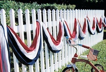 Fences/Gates / by Pam Pintarelli