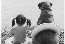 Pet Love / by A Gibson