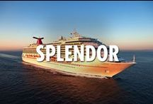 Splendor Class Ships / There are more than just the pools on Carnival Splendor (although it has the most pools of any ship in our fleet). Just browse below to see, and visit carnival.com/cruise-ships to view more features. But if the poolside life is what you're looking for, this ship has it covered. Literally.   Repin our posts to create your own dream cruise. / by Carnival Cruise Lines