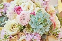 Wedding Flowers / Blooms, Wedding Bouquets, Wedding Flowers, Reception Centerpieces, Stop and smell the flowers.