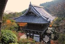 The Pine Tree Temple on Mt. Nishiyama!