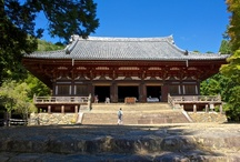 Jingo-ji Temple (神護寺) on Mount Takao in Kyoto! / The Jingoji's 200,000 square meters of sculpted pine, cherry and maple trees is a four season contemplation garden. In spring, cherry blossoms decorate the whole mountain; in summer, the air is filled with the buzzing of cicadas and the music of fronts singing. In autumn, only the vermilion Kondo (Main Hall) competes with the brilliant colours of the Japanese maple trees. Winter snows enhances the retreat's feeling of solitude so treasured by the Shingon sect of Buddhists.