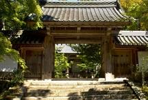 Saimyo-ji Temple in Makinoo!