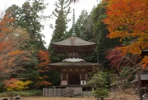 Kontai-ji, A 1300 Year Old Mountain Temple! / Today I went on an 'out of the box' adventure to Kontai-ji temple on Mount Jyubu near Wazuka-cho in Soraku-gun. Relying heavily on the help of i-pad navigation, we arrived at Mount Jyubu, and as my daughter will testify, the road winding up the 685 meter high mountain was full of fear and excitement (mainly fear on her part). Parking on a roadside embankment and shivering in the unseasonal cool air, we had to hike up a steep incline till we reached the temple, by the end of which we were panting