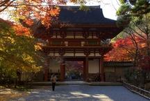Muro-ji Temple by the Muro-gawa River!